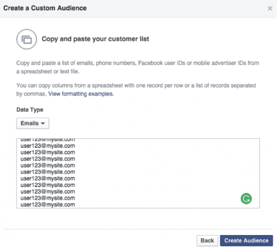 """Paste in your email addresses, and click on """"Create Audience."""""""