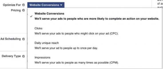 There are four bidding options: Website Conversions, Clicks, Daily Unique Reach, and Impressions.