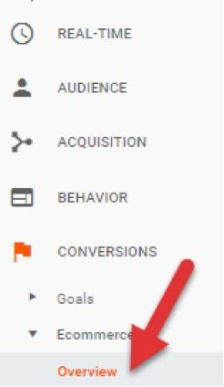 On Google Analytics, monitor conversion rate, average order size, and revenue at <em>Conversions &gt; Ecommerce &gt; Overview.</em>