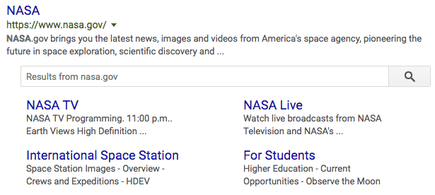 Sitelink search box in Google search results