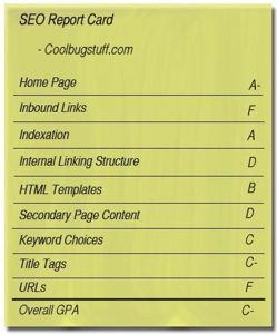 SEO report card for Coolbugstuff.com