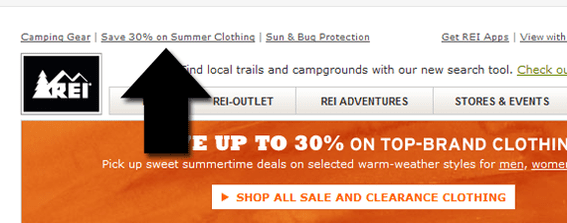 REI uses subtle pre-header text offers in its email marketing.