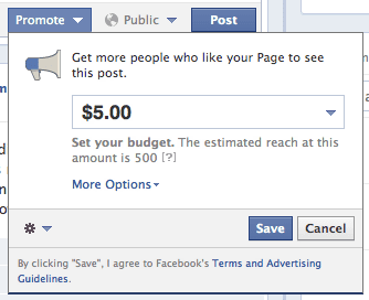 Click the Promote button to select set the budget.